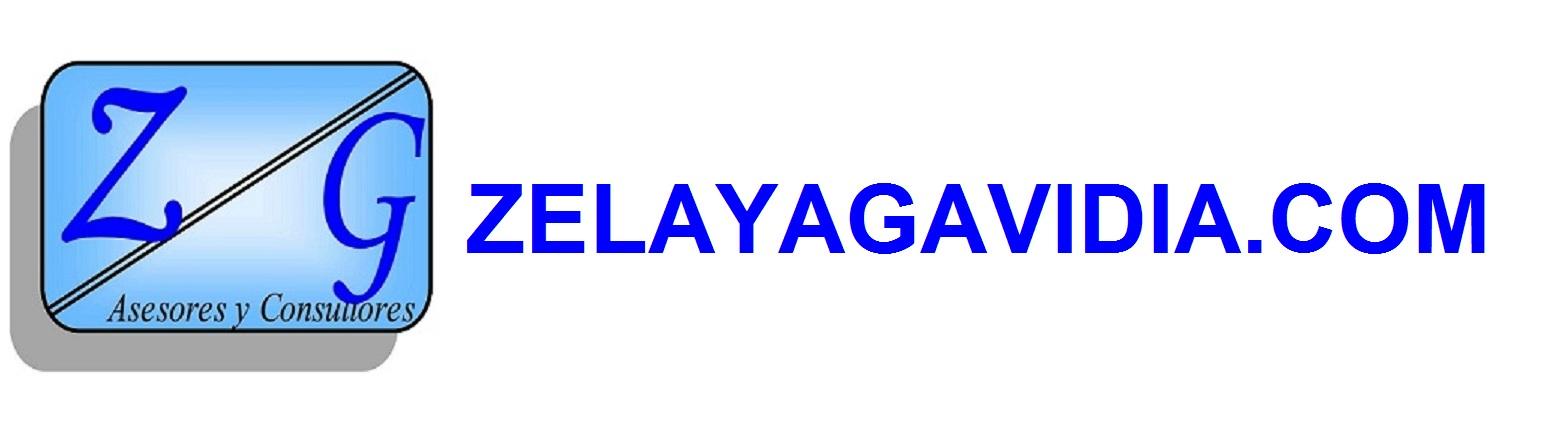 ZELAYAGAVIDIA.COM